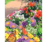 Monarch Butterfly Seed Mat