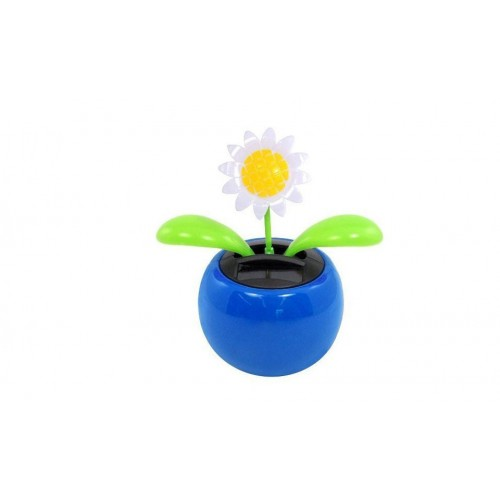 Rock bloom for Gardening 4 less reviews