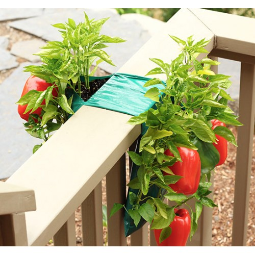 Organic Hanging Patio Gardens