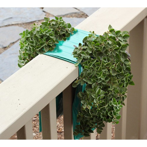 Organic Hanging Herb Gardens