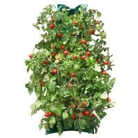 Hanging Organic Tomato Garden