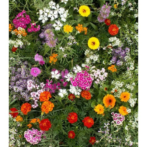 Deer Resistant Roll Out Flower Mat