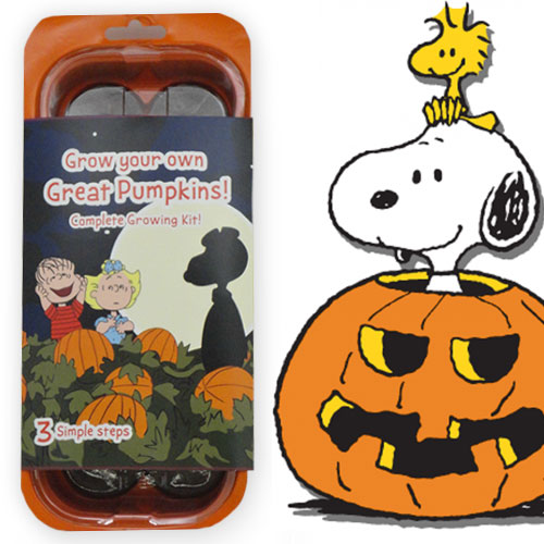 Peanuts Great Pumpkin Patch Growing Tray