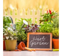 Healthy Herb Garden Pre-Seeded Mat
