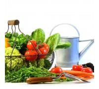 Sunday Salad Vegetable Garden Pre-Seeded Mat