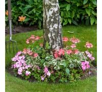 Tree Shade Pre-Seeded Flower Mat